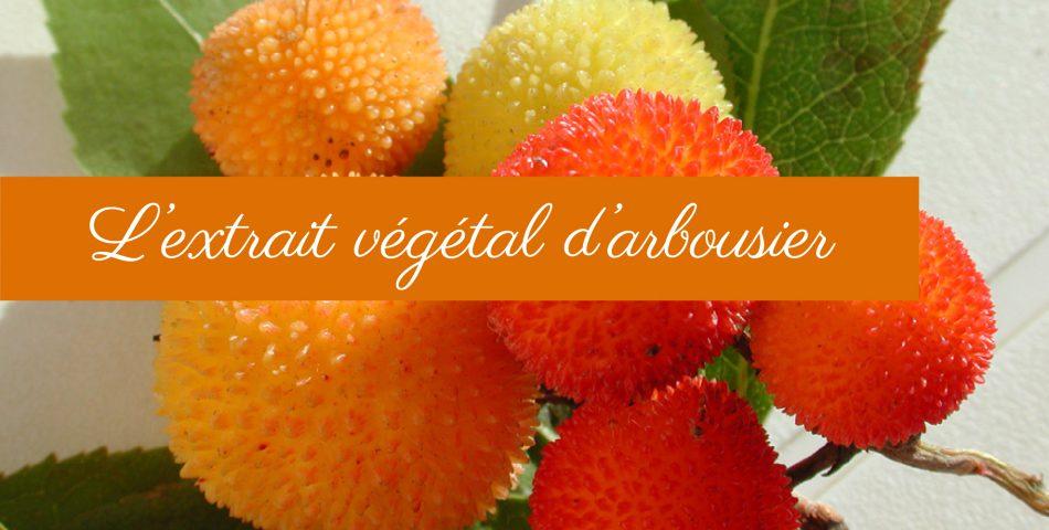 Les vertus de l'extrait végétal d'arbousier dans la gamme de soin Les Happycuriennes