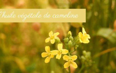 Découvrez l'huile de Cameline et ses bienfaits dans La Joyeuse