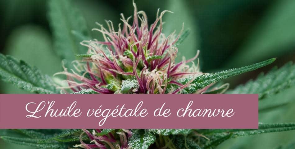 Huile vegetale de chanvre dans notre soin L Audacieuse