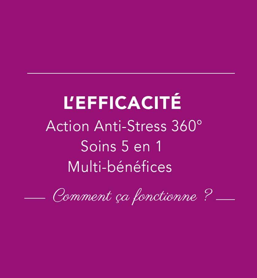 L'efficacité de nos 4 soins bio et vegan repose sur uen action anti-stress 360° cutanés