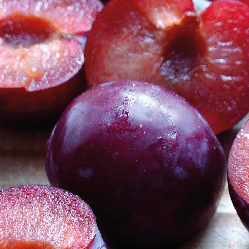 La prune biologique, dans notre soin L Optimiste pour peau seche a sensible