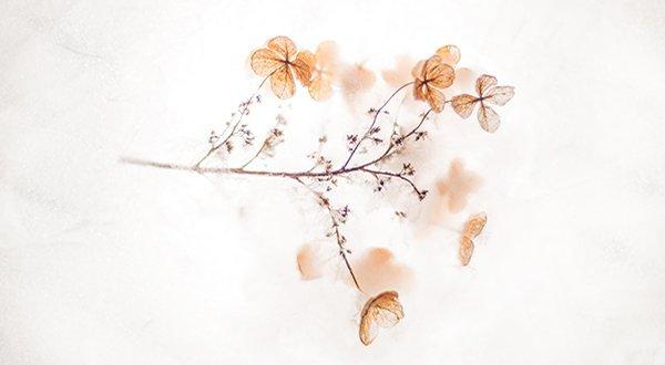Notre recette de beauté naturelle, ingrédient, le minimalisme