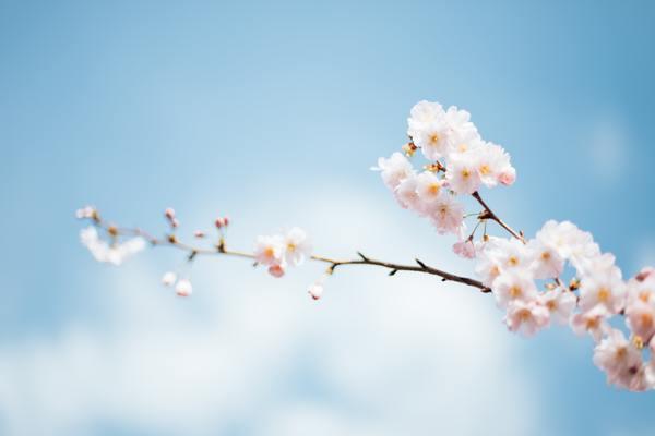 Votre routine beauté au printemps selon Les Happycuriennes