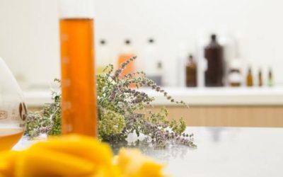 10 astuces pour choisir un cosmétique bio de qualité